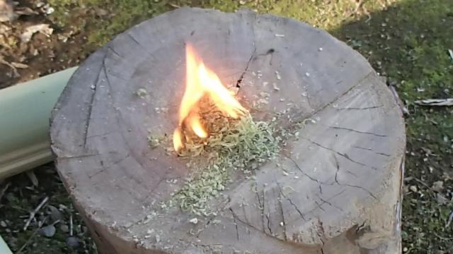 竹ティンダー着火完了