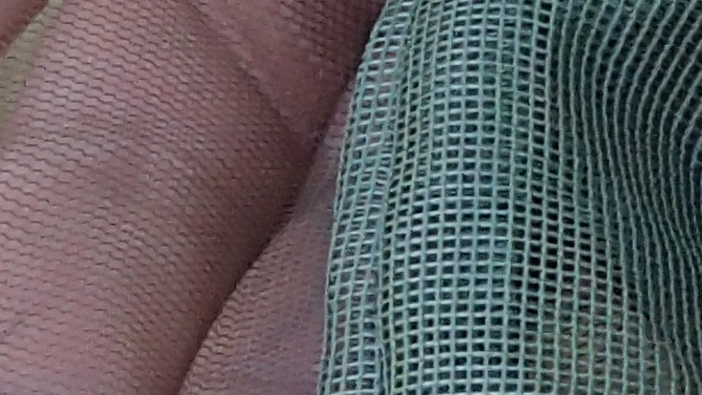 米軍コット用蚊帳の網の目の比較の拡大図