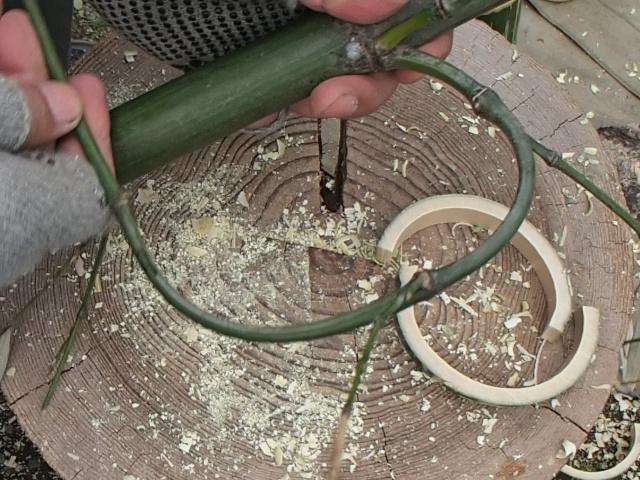 枝で作る把手用の枝を切る
