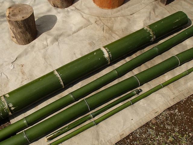 竹水筒用の真竹