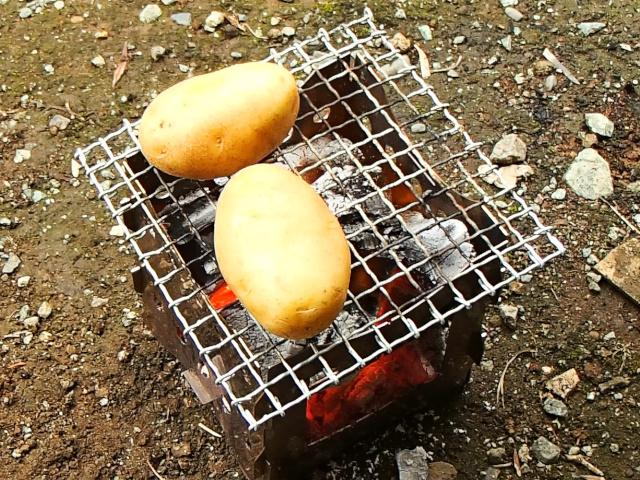 ジャガイモを焚き火台でグリルする
